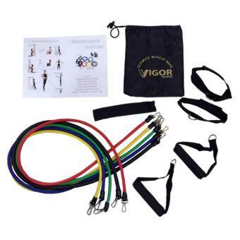 Harga VIGOR Fitness Resistance band Muscle Rope Training Band