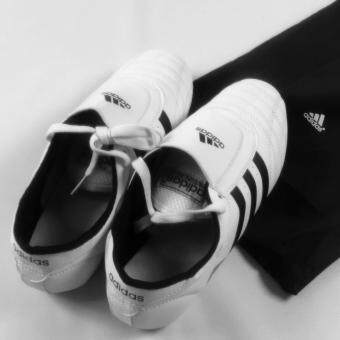 High Quality Adidas Taekwondo Martial Art Shoe