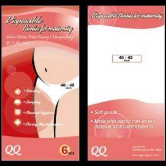 Harga QQ DISPOSABLE PANTIES FOR MATERNITY (4 Packs)