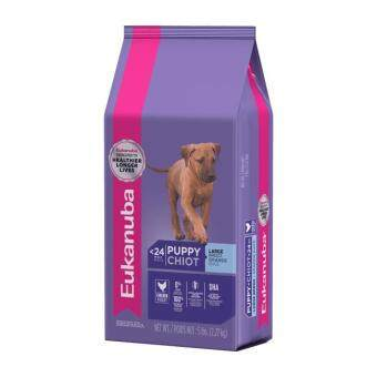 Harga Eukanuba Lifestage Formulas Puppy Large Breed 9KG