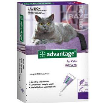 Harga Advantage SPOT ON Cat X 4 Pipet (For Cats > 4KG)