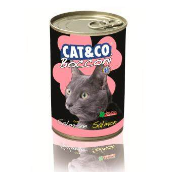 Harga Adragna Cat & Co Chunks Salmon 400gm x 24 tins