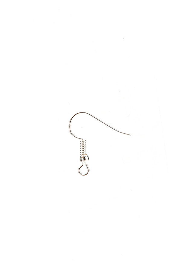 Earring Hook Plated Silver 100pcs Silver(Intl) (EXPORT) - Intl
